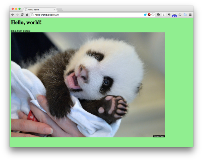 The Hello World page with a green background